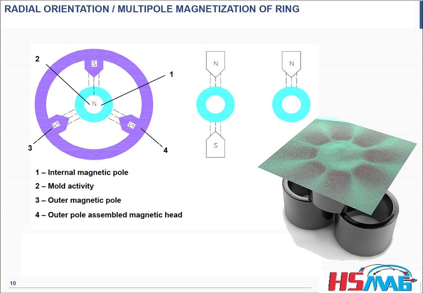 Multipolar sintered neodymium ring magnet 10
