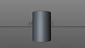 Radial Dual-Pole Cylindrical Magnet