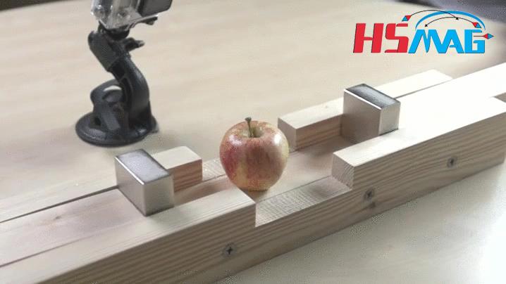 Neodymium Magnet APPLE GIF