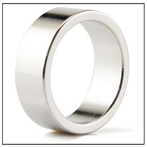Multipole Neodymium Ring Magnet