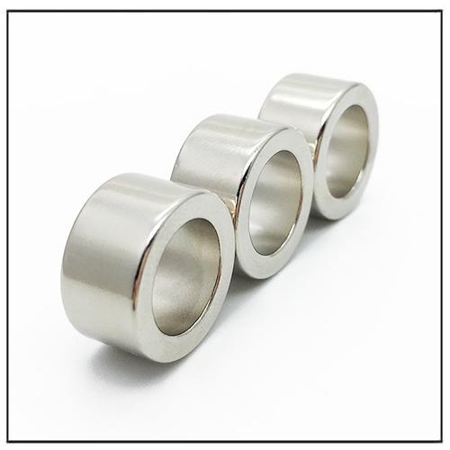 Sintered Neodymium Magnetic Ring