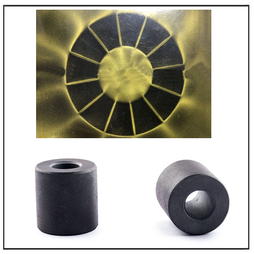 Multipole Radial Ferrite Magnet