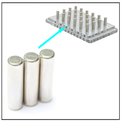 Rod Neodymium Magnets for Magnetic Bead Separation Rack