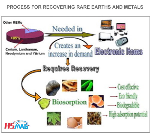 PROCESS FOR RECOVERING RARE EARTHS AND METALS