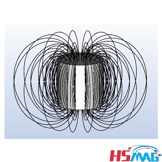 MAGNETIC MOMENT - Magnetic lines of flux